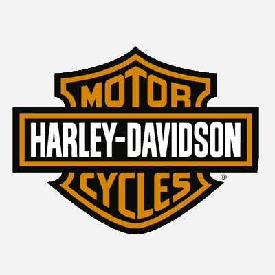 Diagnosis Harley Davidson
